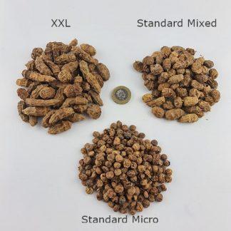 Tiger Nuts